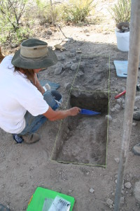 Excavating an earth oven.